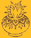 Beermyrobalan